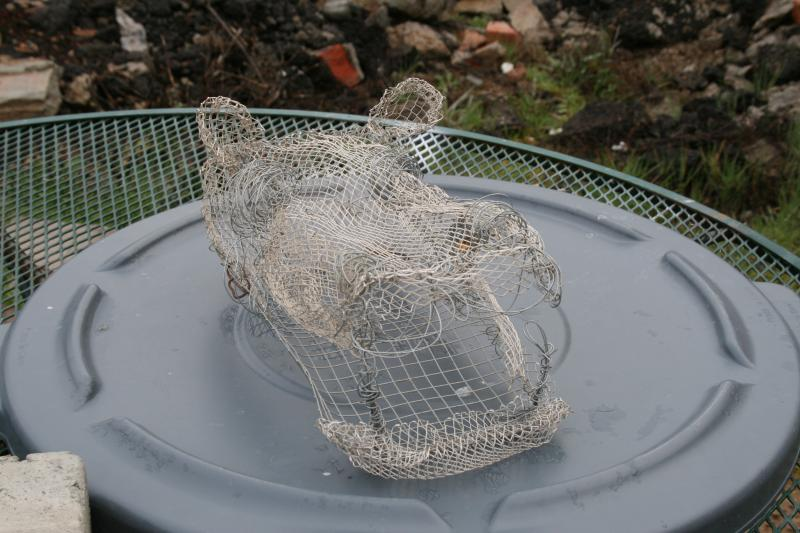 Hippo Wire Armature